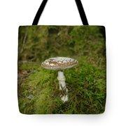 A Sole Mushroom Tote Bag