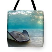 A Southern Stingray Tote Bag
