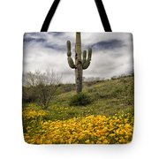 A Southwestern Style Spring Tote Bag