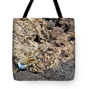 A Spider With The Egg Sack Tote Bag