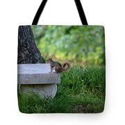A Squirrel's Day Out Tote Bag