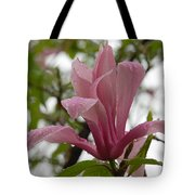 A Steady Rain Tote Bag