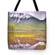 A Still Day At Buck Lake Tote Bag