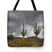 A Storm In The Sonoran Desert Tote Bag
