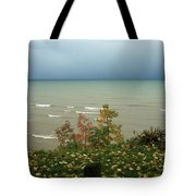 A Storm Is Brewing Tote Bag by Kathy DesJardins