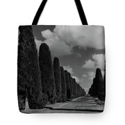 A Street Lined With Cypress Trees Tote Bag