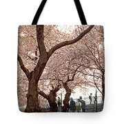 A Stroll In Central Park Tote Bag