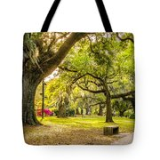 A Stroll In City Park Tote Bag