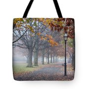 A Stroll In Salem Fog Tote Bag