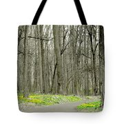 A Stroll Through Peace Valley Tote Bag