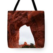 A Stunning Window Tote Bag