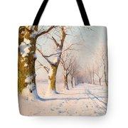 A Sunny Winter's Day Tote Bag