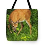 A Taste Of Nature Tote Bag