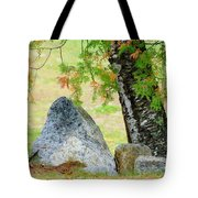 Along The Trail Tote Bag