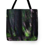 A Thin Veil Tote Bag