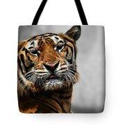 A Tiger's Look Tote Bag