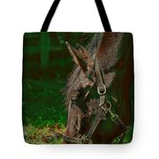 A Time To Eat Tote Bag