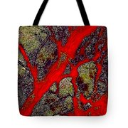 A Touch Of Autumn Abstract IIi Tote Bag