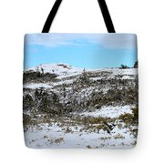 A Touch Of Blue Panorama Tote Bag