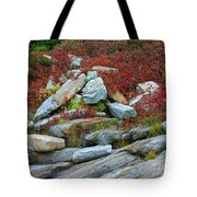 A Touch Of Color Tote Bag