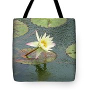A Touch Of Pink Tote Bag