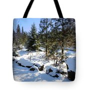 A Touch Of Snow Tote Bag