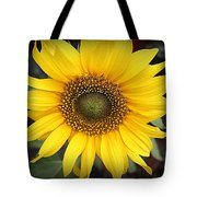 A Touch Of Sunshine - Sunflower Tote Bag