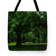 A Tree And A Bench Tote Bag