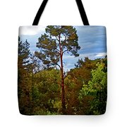 A Tree Tote Bag