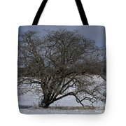 A Tree In Canaan 2 Tote Bag