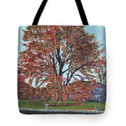 A Tree In Sherborn Tote Bag