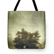 A Tree In The Fog 2 Tote Bag by Scott Norris