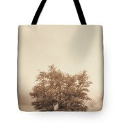 A Tree In The Fog Tote Bag