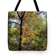 A Tree's Life Tote Bag
