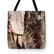 A Treetrunk Abstract Tote Bag