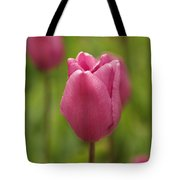 A Tulip Unfolds Tote Bag
