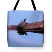 A Turtle Reflecting Tote Bag
