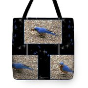 A Typical Eastern Bluebird's Lunch - Featured In Comfortable Art Group Tote Bag