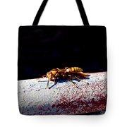 A Vespid Wasp  Tote Bag