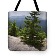 A View From A Mountain In A Vermont State Park Tote Bag