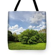 A View From Burrow Mump Tote Bag