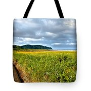A View From Discovery Trail Tote Bag by Robert Bales