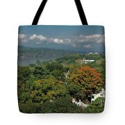 A View From The Hudson River Walkway Tote Bag