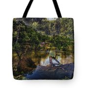 A View Of The Nature Center Merged Image Tote Bag