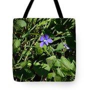 A Violet Tote Bag