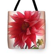 A Vision In  Coral - Dahlia Tote Bag