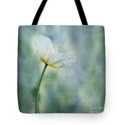 A Vision Of Delight Tote Bag