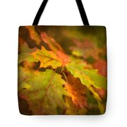 A Vision Of Fall Tote Bag