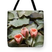 A Visitor To The Pond Tote Bag