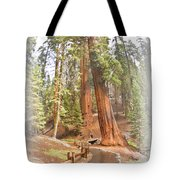 A Walk Among The Giant Sequoias Tote Bag